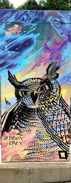 Dorchester, MA - Street Art & Graffiti. Nice owl by @bboycrey - on electrical box. Original Photography by R. Stowe