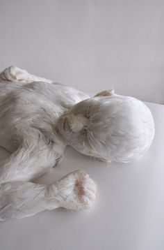 Lucy Glendinning, Feather Child, 2011.