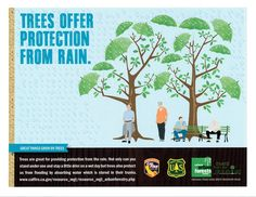 Did You Know trees are great for providing protection from the rain? With the recent rains, they sure helped! Learn more about urban forestry at http://calfire.ca.gov/resource_mgt/resource_mgt_urbanforestry.php