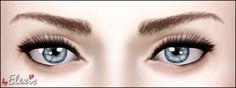 """Bare Naturals Eyebrows by Elexis @ MTS. """"No paysites, always credit me with a link. Ask me first before modifying/using."""" [Free]"""