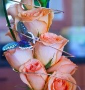 This Unique take on a dozen roses can be done in almost any color and is designed so that the roses dry just how they are. We add wire and butterflys to give the arrangment an extra touch of class.
