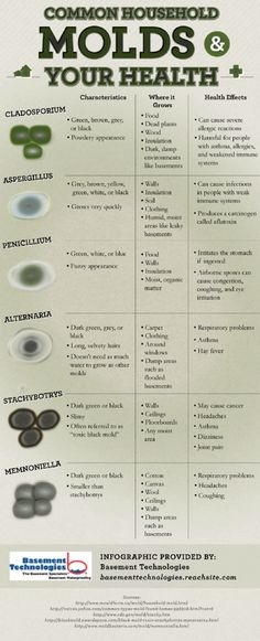 Common Household #Mold and Your #Health #Infographic