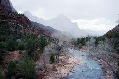 "goodoldfreshair: ""Virgin River, Zion National Park, UT Original Adventure Photography at joshuasegraves """