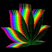 Fondos de Pantalla Marihuana