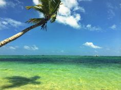 Top 7 Hotels In Punta Cana