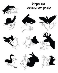 Easy Hand Shadow Puppets - Bing Images