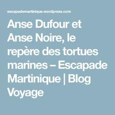Anse Dufour et Anse Noire, le repère des tortues marines – Escapade Martinique | Blog Voyage