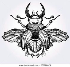 Beautiful hand drawn antique Stag Beetle,the largest insect. Engraving romantic collection illustration isolated on Print and fabric design. Flash Art Tattoos, Body Art Tattoos, Kritzelei Tattoo, Doodle Tattoo, Beetle Tattoo, Vintage Style Tattoos, Petit Tattoo, Elbow Tattoos, Botanical Tattoo