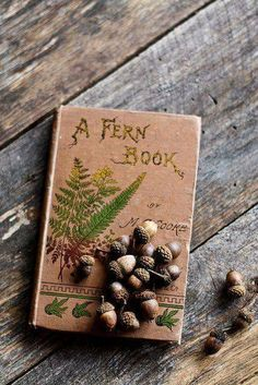 FERN & IVY'S WOODLAND COTTAGE// what a great starter idea for personalizing a diary you are giving as an Xmas gift!