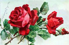 Catherine Klein, Beautiful Flowers Photos, Flower Photos, Botanical Flowers, Botanical Art, Rose Pictures, Rose Oil Painting, Rose Wallpaper, Rose Art