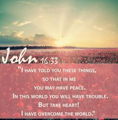 I have told you these things so that in Me you may have peace. In this world you will have trouble but take heart! I have overcome the world.