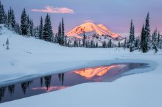 """Sunrise on the Noblest Mountain  """"Of all the fire mountains which, like beacons, once blazed along the Pacific Coast, Mount Rainier is the noblest."""" -- John Muir  I woke up at 2AM, made the drive to Mt. Rainier trying to catch that elusive fresh snowfall before this part of the park would be closed for the year (only a few days later), and enjoyed this peaceful sunrise all to myself.  Then I drove into work with a smile on my face, despite the lack of sleep.  #mountainmonday…"""