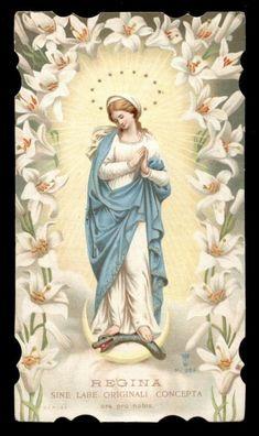 santino cromo-holy card S.LEGA n.289 MARIA IMMACOLATA