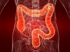 5 formas de desintoxicar el colon de manera natural
