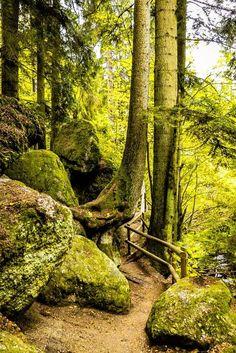 Dunkelsteinerwald kennenlernen: Sextreffs in aachen und
