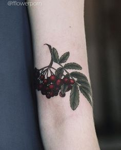 WEBSTA @ fflowerporn - Rowanberry from some weeks ago #tattoo #tattoos #ink…
