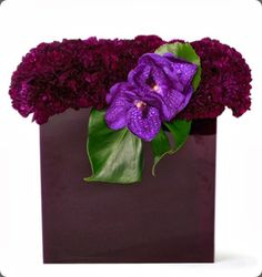 carnations : floral art
