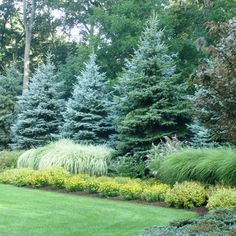 These are three of the most useful front yard landscaping ideas that have been used by homeowners in the past. The charm of these front yard landscaping ideas. Landscaping With Boulders, Privacy Landscaping, Landscaping Trees, Backyard Privacy, Outdoor Landscaping, Front Yard Landscaping, Outdoor Gardens, Natural Landscaping, Acreage Landscaping