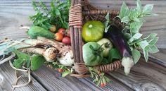 Garden Harvest...July 4, 2015  www.gardenanywherebox.com