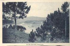 Ría de Vigo. Ramallosa - Tarjeta postal | Roisín, Luciano (1930)