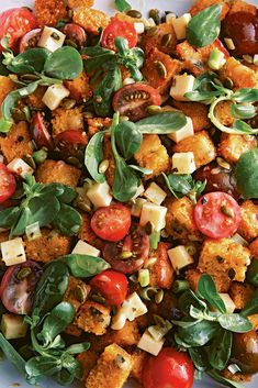Learn how to make Ilene Rosen's Tex-Mex cornbread salad with pepper Jack cheese, tomatoes and purslane from her new book, Saladish.