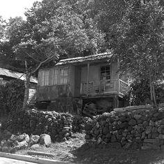 october 1958  port antonio, jamaica  local residence
