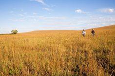 Kansas' Flint Hills Scenic Byway | Midwest Living