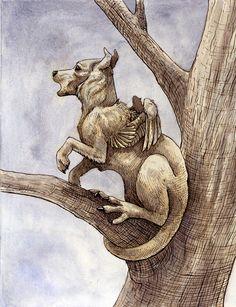 Drekavac- Slavic myth: a creature with a disproportionate head with the body of a fox and legs of a kangaroo. Sometimes with bird features. It was said to be the souls of unbaptized children. Their presence predicted cattle disease. They also had a horrifying yell.