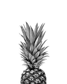 PINEAPPLE TOP Art Print by NORDIK