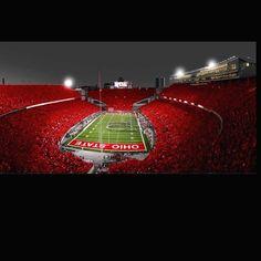Ohio State Buckeye Nation Go Bucks Buckeyes Football, Ohio State Football, Ohio State University, Ohio State Buckeyes, College Football, Ohio State Wallpaper, Ohio Stadium, Cincinnati Reds, Cleveland