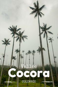 En route pour la sublime vallée de cocora et ses palmiers géants. Un paysage insolite et unique en Colombie, à ne manquer sous aucun prétexte lors de votre voyage en amérique du sud.