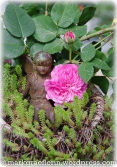 Mai, Garden Sculpture, Wordpress, Roses, Outdoor Decor, Home Decor, Watering Plants, Rain Drops, Lawn And Garden