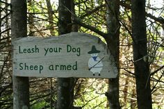 Nova Scotia takes its leash laws seriously. Canada Funny, Nova Scotia, Sheep, Your Dog, Explore, Outdoor Decor, Dogs, Pet Dogs, Doggies