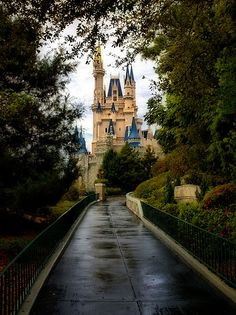 Walt Disney Magic Kingdom Cinderella's Castle