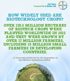 The application of biotechnology in agriculture has resulted in benefits to farmers, producers, and consumers. Biotechnology has helped to make both insect pest control and weed management easier while safeguarding crops against disease.