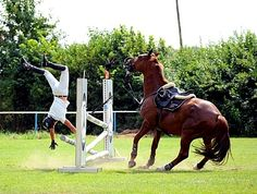 Fall off the horse in show jumping,Bavaria,Germany
