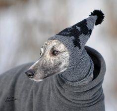 Lucho! Abrígate que hace frío!!