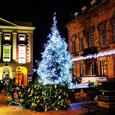 Christmas tree, St Helen's Square, York, England