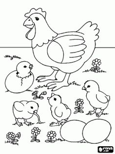rooster and hen coloring pages - Google Search