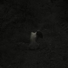 andrea koporova | alone | solitude | darkness | black | naked in nature | noir |