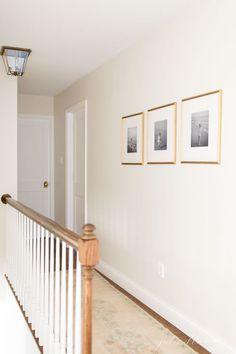 Cream color paint is a warm neutral wall color that fits just about every home and every room. The best cream paint colors for walls – these warm white paint colors are all around easy to use. Cream Paint Colors, Wall Paint Colors, Hallway Wall Colors, Room Paint, Beige Paint, Best Neutral Paint Colors, Neutral Walls, Design Seeds, Ikea Hacks