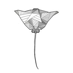 Image result for geometrical stingray