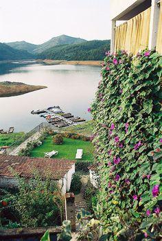 - Dornes,Ferreira do Zezere, Portugal , Portugal -