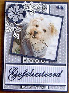 3d Cards, Marianne Design, Graphic 45, Dutch, Teddy Bear, Scrapbook, Frame, Dogs, Cat Breeds