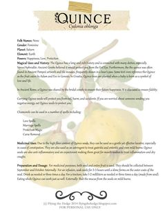 Free BOS page on Quince. Magical and medical uses of Quince.
