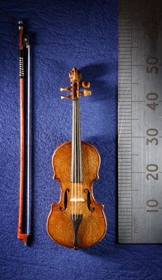 Miniature instruments A £1000 dolls house violin and bow based on a Stradivarius, and built from Pearwood and Ebony with real sheep gut strings made by former Royal Philharmonic Orchestra Cellist David Edwards at his home workshop in Edinburgh. 26/10/2011