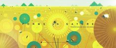 FORMS IN NATURE: Understanding Our Universe on Vimeo #animation