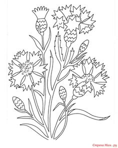 flower garden coloring pages from Flowers Coloring Pages Printable. Flowers become great demanded object for most people in the world. Children, teenagers, or adult really like them. The flower's presence are alway. Printable Flower Coloring Pages, Garden Coloring Pages, Vegetable Coloring Pages, Pattern Coloring Pages, Adult Coloring Book Pages, Coloring Books, Landscape Art Quilts, Animal Skeletons, Scandinavian Folk Art