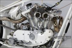 AMD World Championship, Motorsports Garage, bike details & gallery