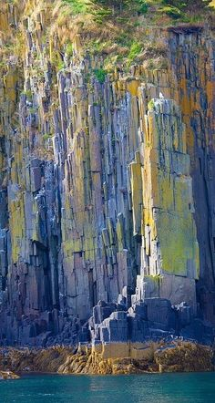 The  lichen covered volcanic rocks on the shore of Briar's Island, Nova Scotia make for vibrant colours as the evening light hits them • photo: Barry Scully on Flickr